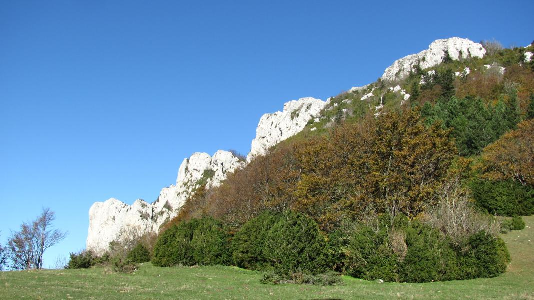 Col de Tourniol