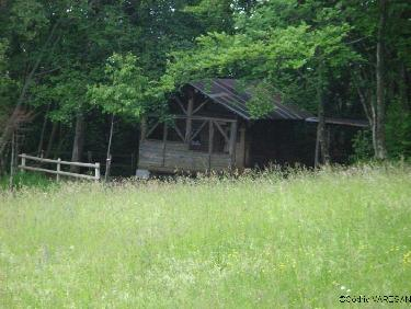 Cabane foresti�re